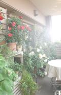 veranda201305-2.jpg
